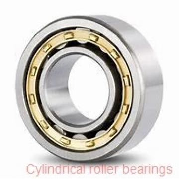 FAG NU203-E-M1A-S1-C3 Cylindrical Roller Bearings