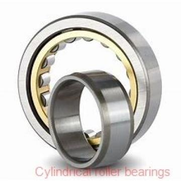 FAG NJ244-E-M1-C3 Cylindrical Roller Bearings