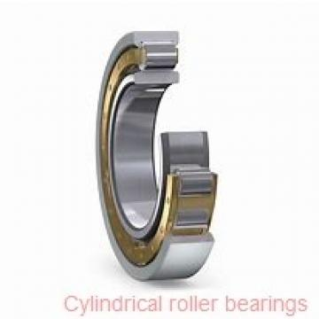 17 mm x 47 mm x 14 mm  FAG NU303-E-TVP2 Cylindrical Roller Bearings