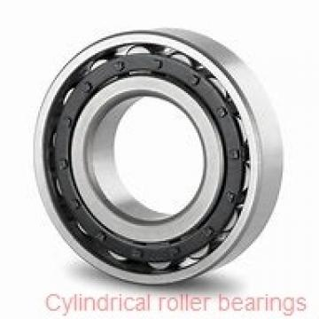 20 mm x 47 mm x 18 mm  FAG NUP2204-E-TVP2 Cylindrical Roller Bearings
